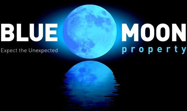 Blue Moon Property - logo